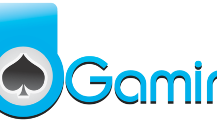 Ho Gaming Casino Software