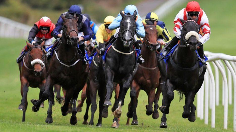 Horse Racing in the Internet Era