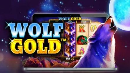 """Wolf Gold"" created by Pragmatic Play: Betrnk Slot Features"