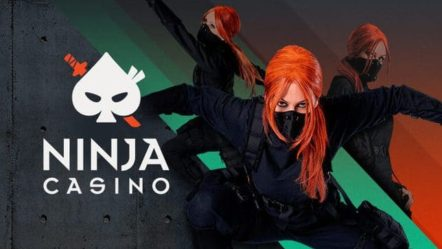Spelinspektionen blocks Ninja Casino-Viral Interactive launch