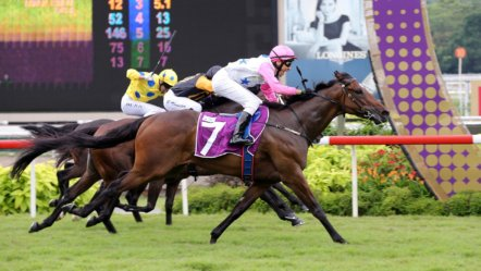 Sky Racing World to Cover Japanese Horse Racing