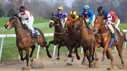 Pronet Gaming prepares for horse racing debut with BetMakers Technology Group