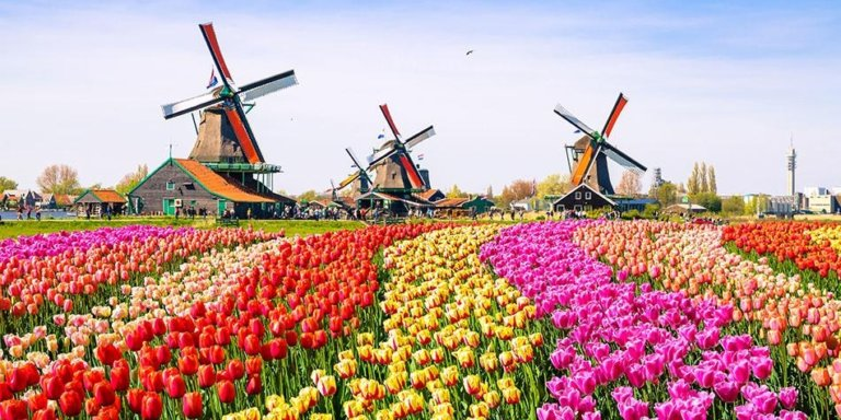 Netherlands sets date for reopening casinos