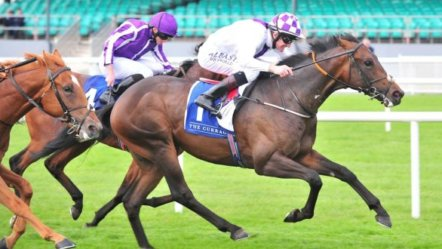 Irish government confirms return of horse racing on June 8