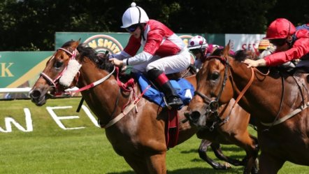 Scotland: horse racing to resume on June 22