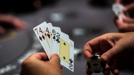 The Bureau of Investigation Catches Korean Illegal Gambling Operator