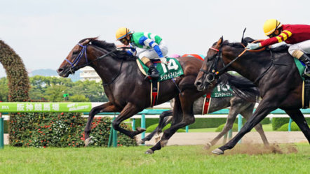 Japan: horse racing to remain behind closed doors