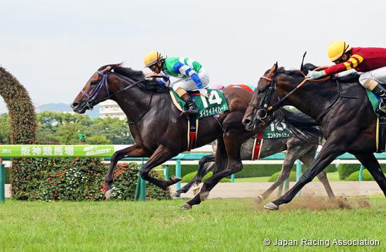 Japan: horse racing to remain behind closed doors