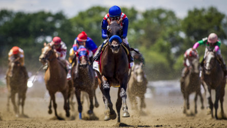 Betfred extends racing deal with XB Net