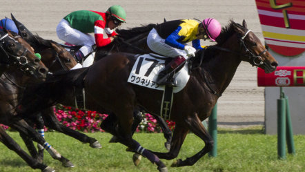 JRA set to partially reopen more off-track betting facilities