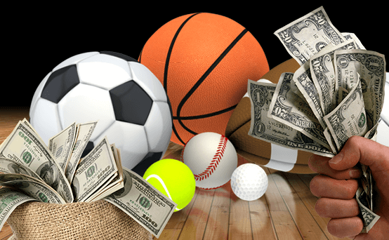 Which Sports are the Most Profitable to Bet on?