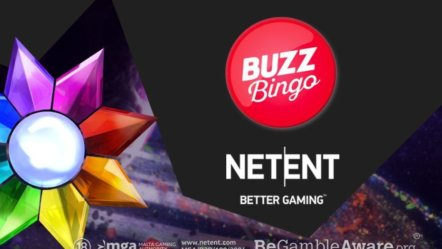 NetEnt to launch in the UK with Buzz Bingo
